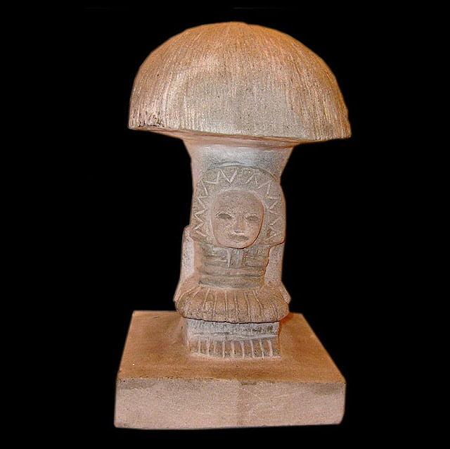 L'homme champignon